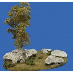 Décors, dioramas, bouleau, rochers et plantes en été