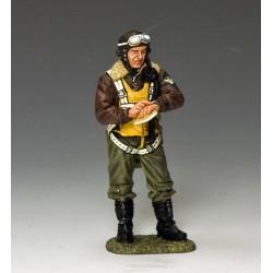 Pilote de chasse Américain, USAF 1941-1945