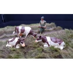 Décors-dioramas, 3 vaches Normandes , bataille de Normandie été 1944 n°2