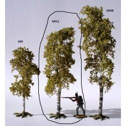 Décors-dioramas, arbre bouleau, taille moyenne, en été